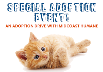 Special Adoption Event & Supply Drive!