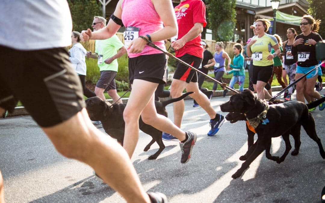 The Save a Stray 5K & Festival is August 24th!
