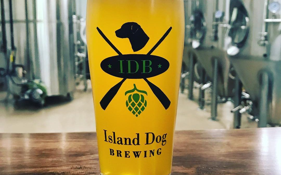 National Towel Day Event at Island Dog Brewing