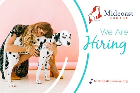 Midcoast Humane Launches Executive Director Search