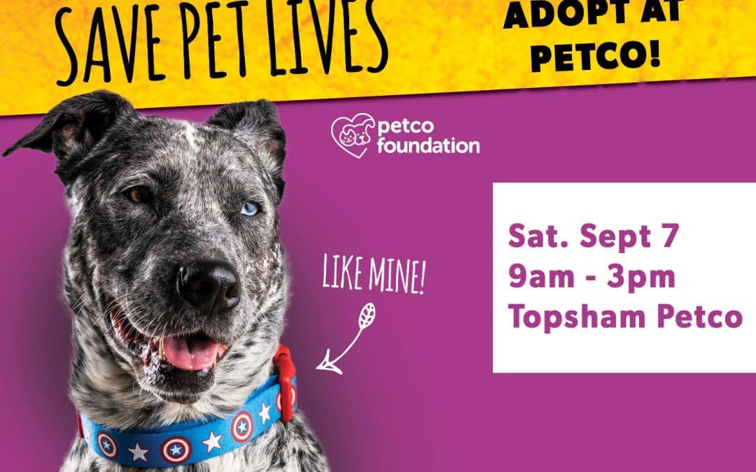 All For Saving Lives Adoption Event