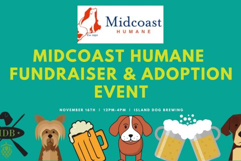 Aoption Event & Fundraiser at Island Dog Brewing