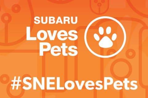 Subaru Loves Pets!